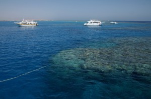 red_sea_05